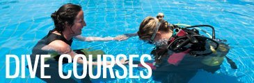 Scuba diving courses in Indonesia