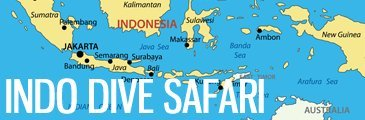 Indonesia Dive Safari