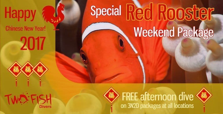 Get free afternoon dive on Chinese New Year 2017