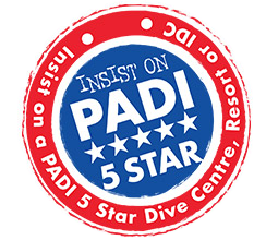 PADI Rescue Diver Course on Lembongan Insist on PADI 5Star