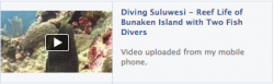 Reef life of Bunaken Island with Two Fish Divers