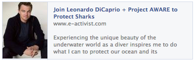Join Leonardo DiCaprio + Project AWARE to Protect Sharks