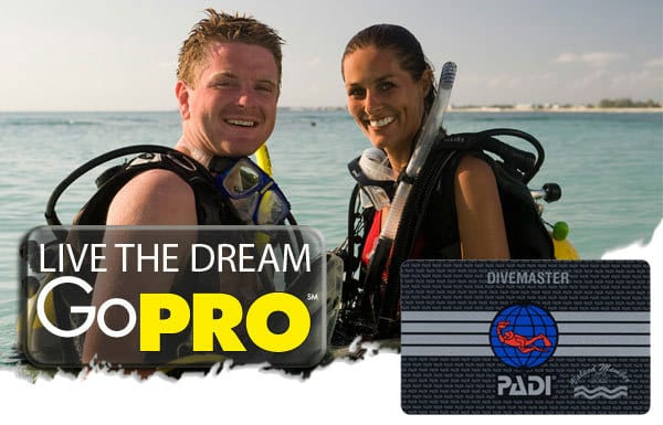 live the dream and become and PADI Divemaster Intern