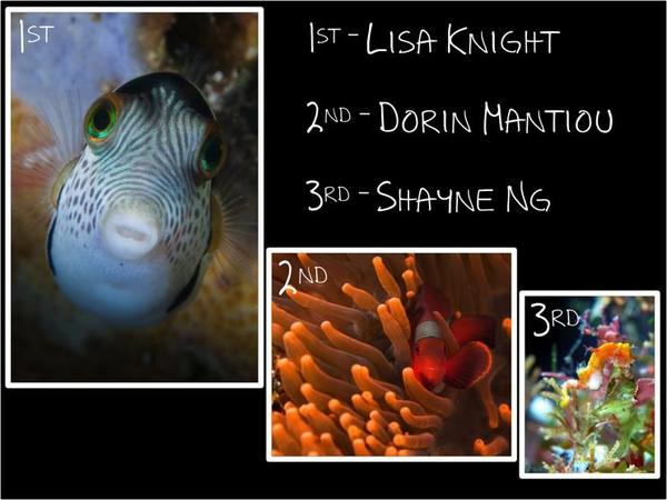 Bunaken photo competition results 2012