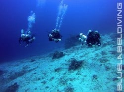 bottom time on the 100m dive in Bunaken