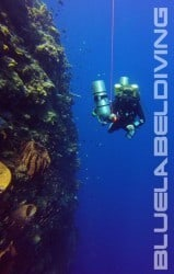 try-dives for the 100m dive in bunaken