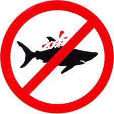ban shark fin