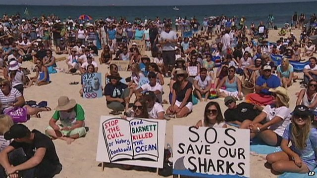 beach protest stop WA shark cull