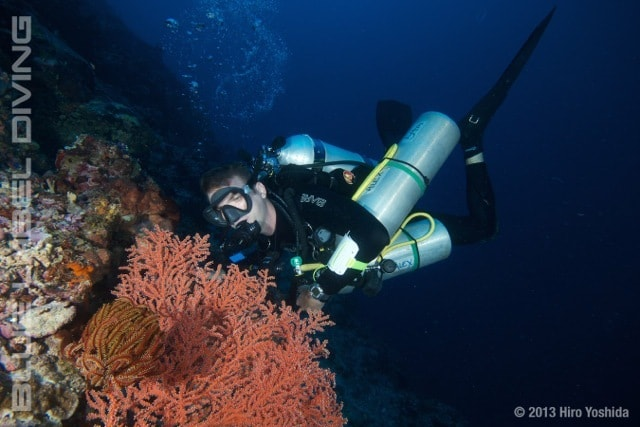 PADI TEC 45 course - extend your depth and time using 100% nitrox
