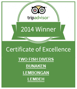 trip-advisor-2014