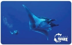 100% aware cert card manta ray
