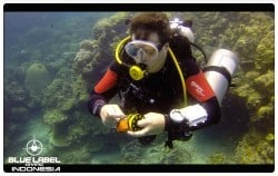 Entry Level Technical Diving