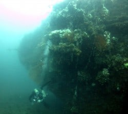 Mawali Wreck re-discovered!