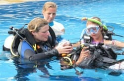 idc in indonesia rescue sessions