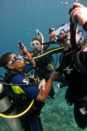 New PADI Open Water Course