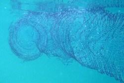 aliens in the water in lembongan