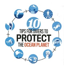 10 Tips to protect the ocean