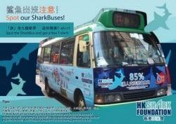 Shark Buses in Hong Kong