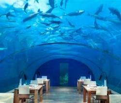best restaurant in the world