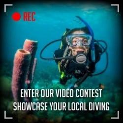 video contest nov2014