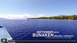 beyond 40m in bunaken