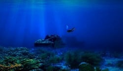 what we know about deep diving
