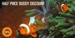 half-price-buddy-discount-SM