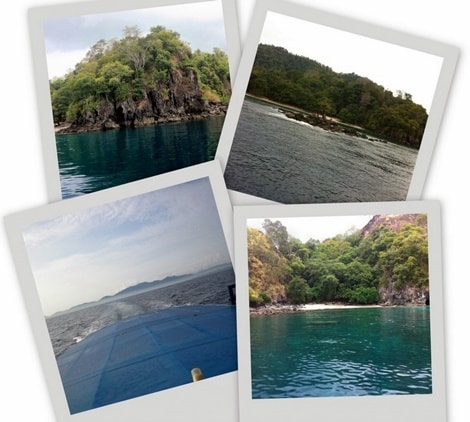 Dawn dives and Day trips
