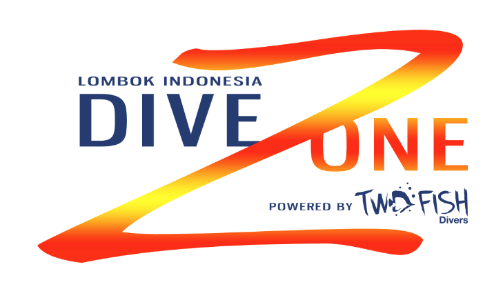 DIVING LOMBOK WITH TWO FISH DIVERS / Dive Zone
