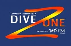Dive-Zone-dark-816x523