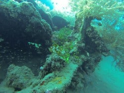 Diving Japanese Wreck in Bali
