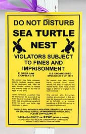 Sea_turtle_nest_sign_(Boca_raton,_FL)