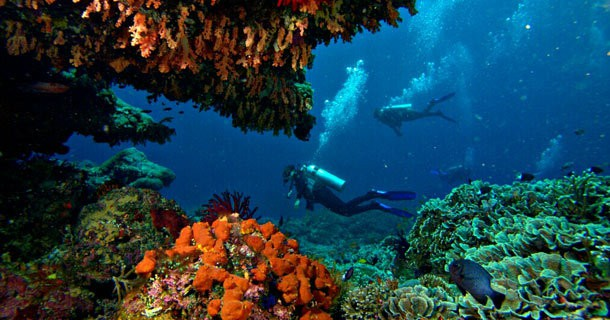 diving-nusa-lembongan-13