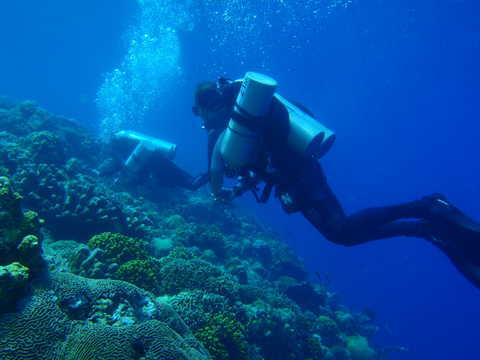 Deep Reef at Bunaken