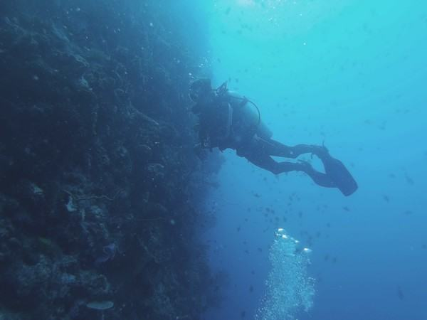 Week Two - Scott's Divemaster course in Bunaken