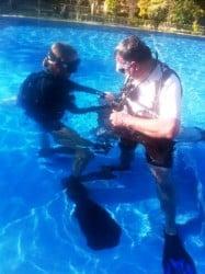 Sidemount training in the pool
