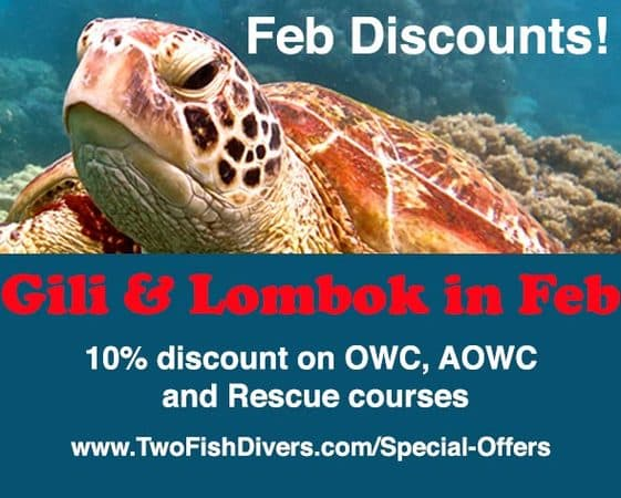 10% discount with scuba courses in Gili's, Lombok