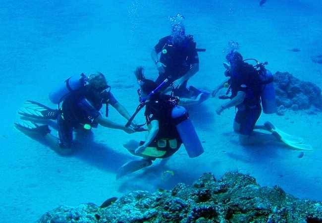 Lots of Dive Courses In Lembongan