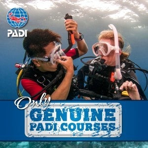 Genuine_PADI_Course_in_Bunaken