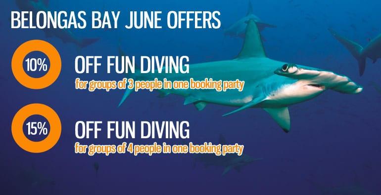 belongas-bay-special-offers-june16