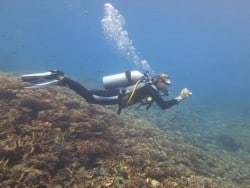 Kate - Lombok - PADI Women's Dive Day 2016