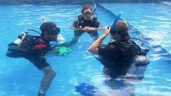 Divemaster training in progress