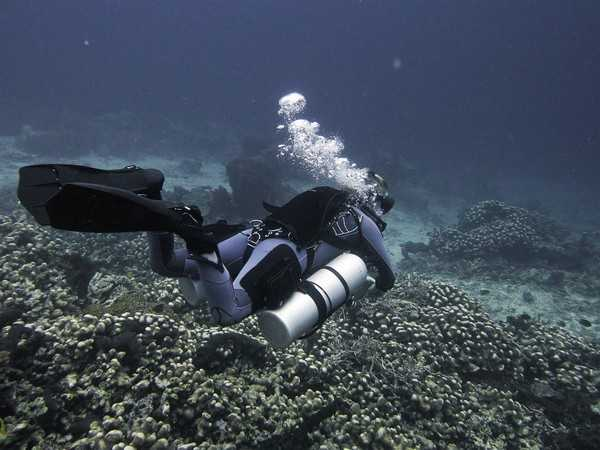 Solo Diving courses at Two Fish Tech in Amed, Bali