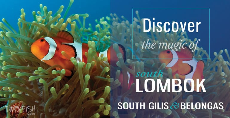 discover south lombok