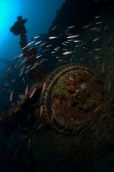 Join us for wreck diving in Truk Lagoon