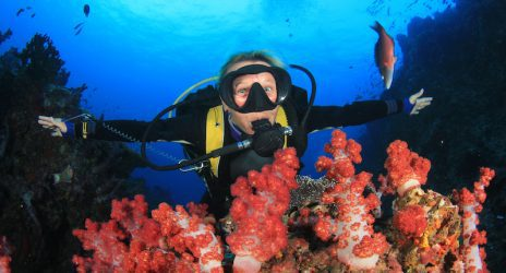 Two Fish Divers Indonesia