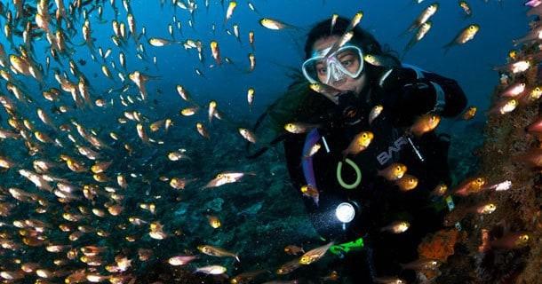Dive Lombok and Gili