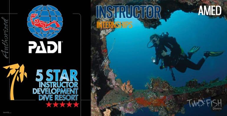 instructor internship amed bali