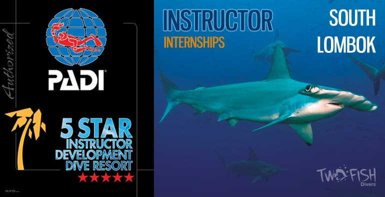 instructor internship south lombok