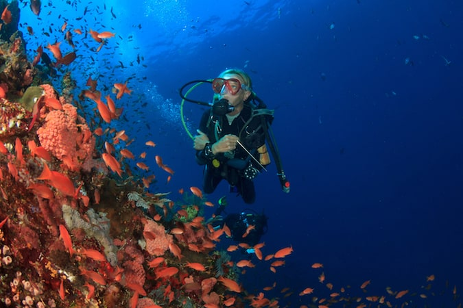 Advanced Open Water Diving South Gili's